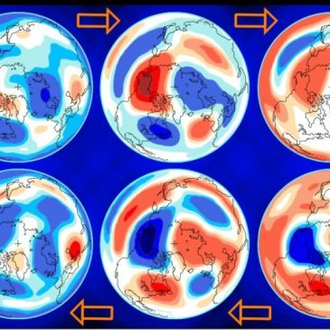 The Sun's 11-year cycle cannot explain global warming