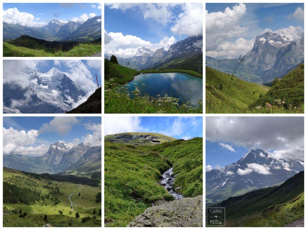 Panoramaweg Männlichen - Kleine Scheidegg