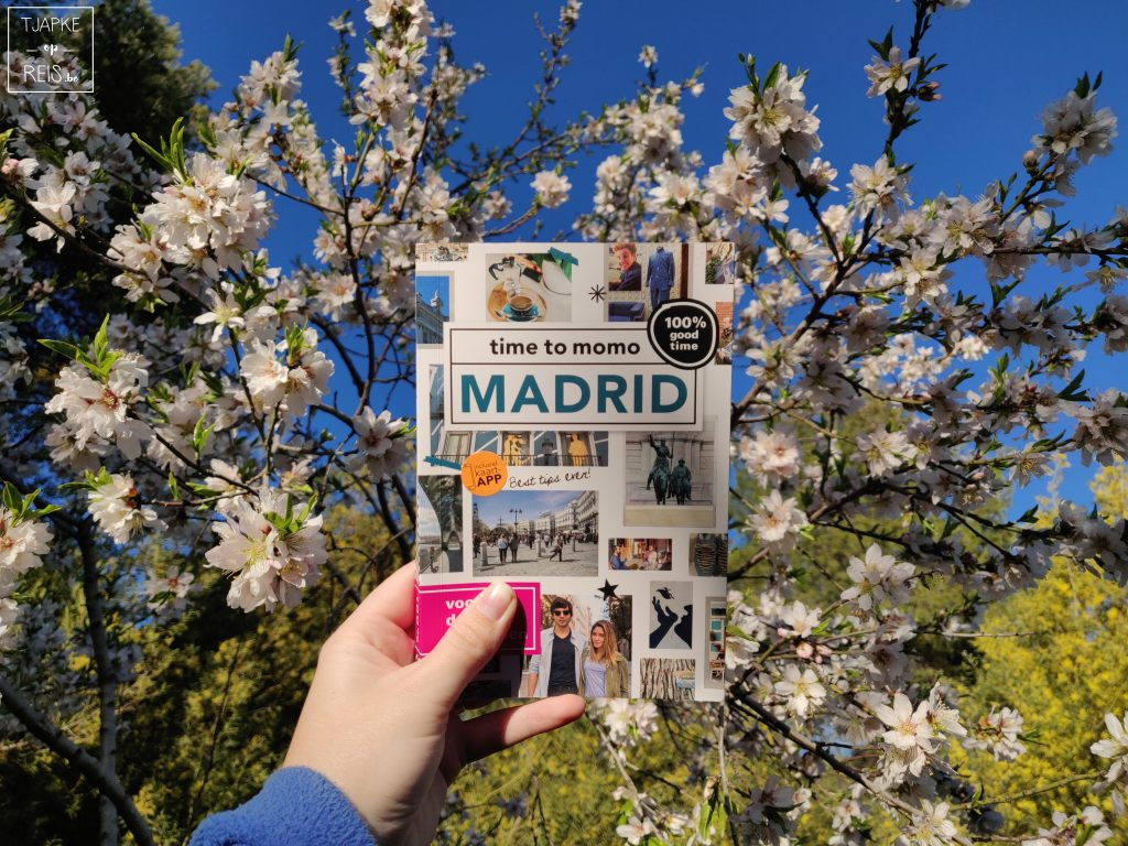 time to momo Madrid