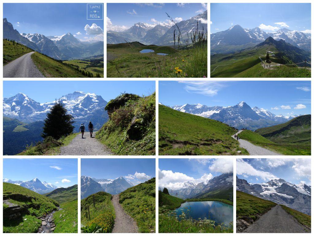 Jungfrauregio