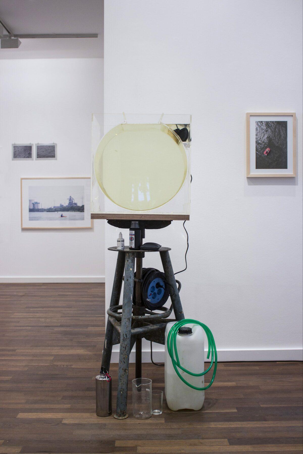 Medusa : floating body #2, exhibition view, living medusa, Galerie Crone Berlin, 2019
