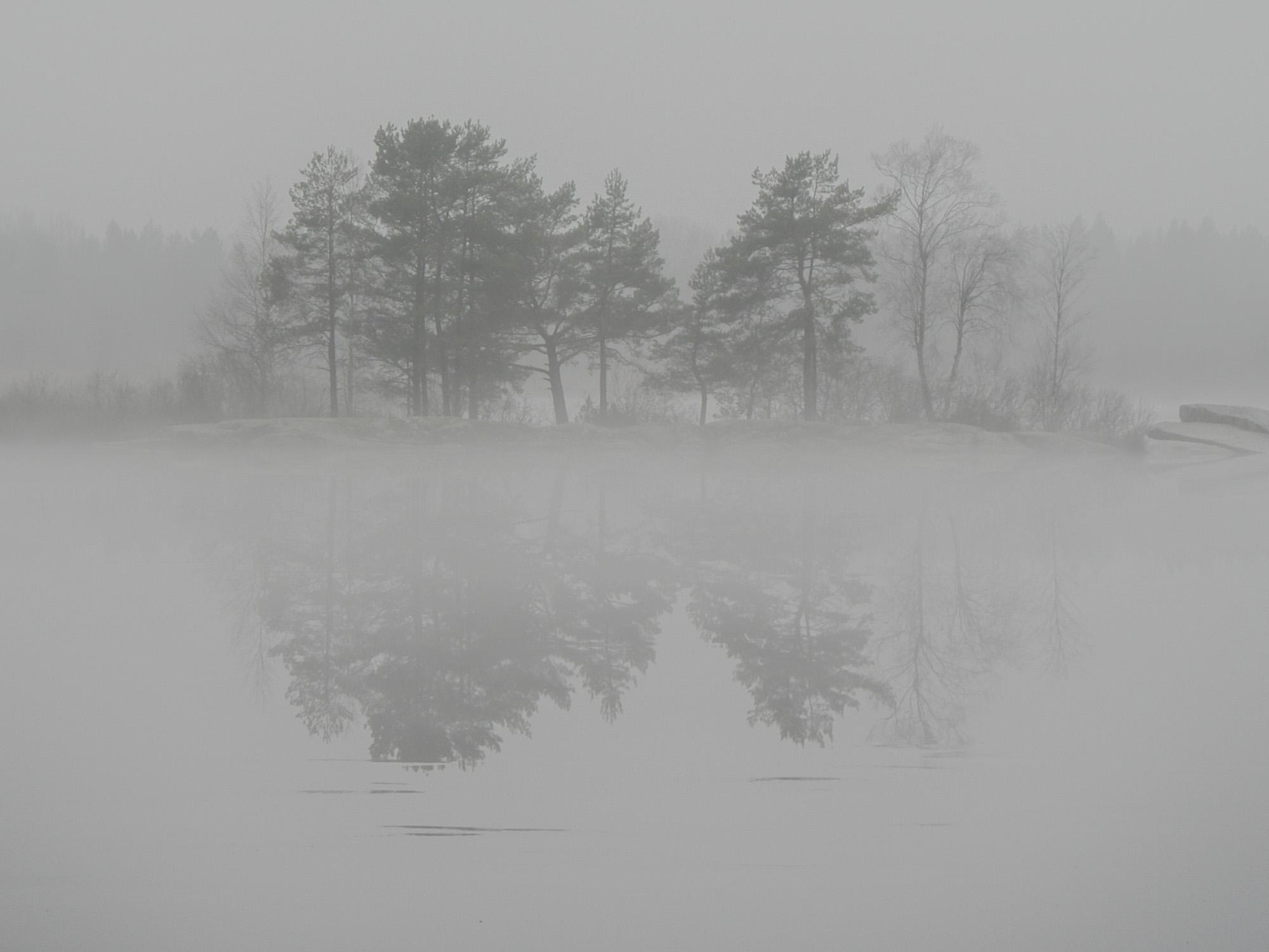 Dimma över Strandsjön Järlåsa