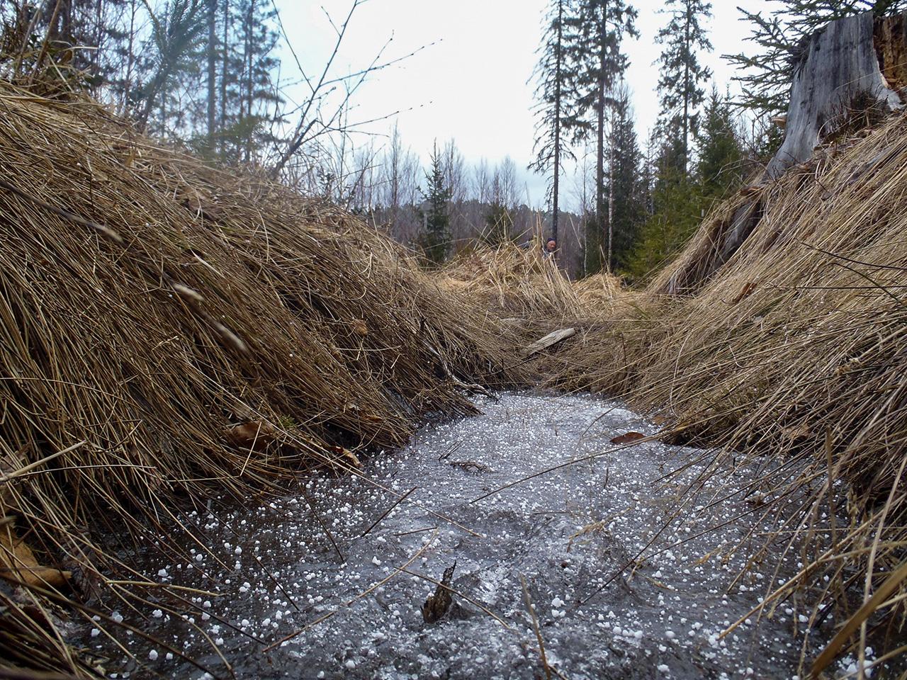 trögflytet-vattendrag