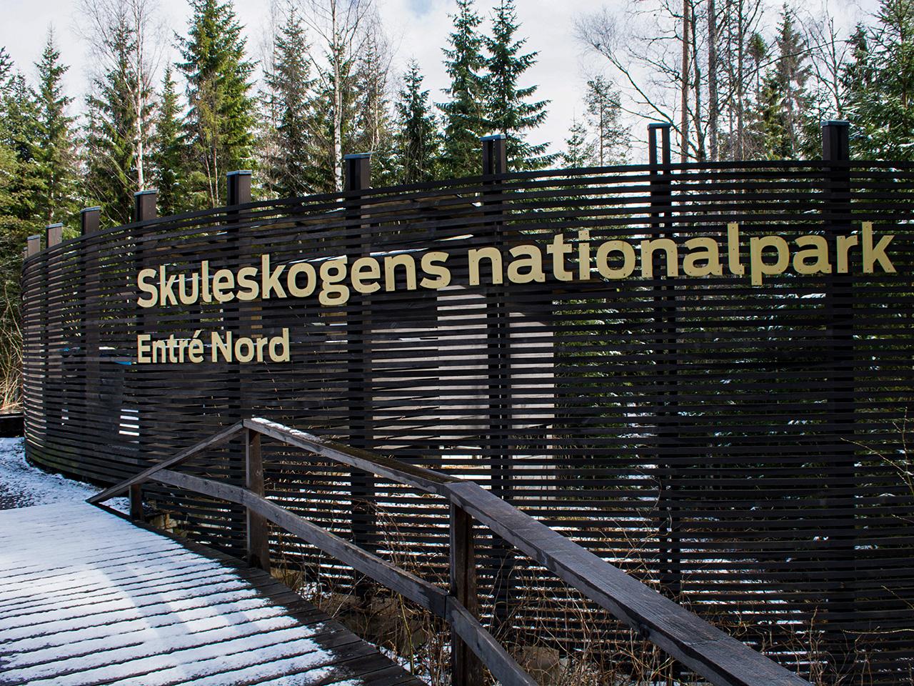 norra-skuleskogen