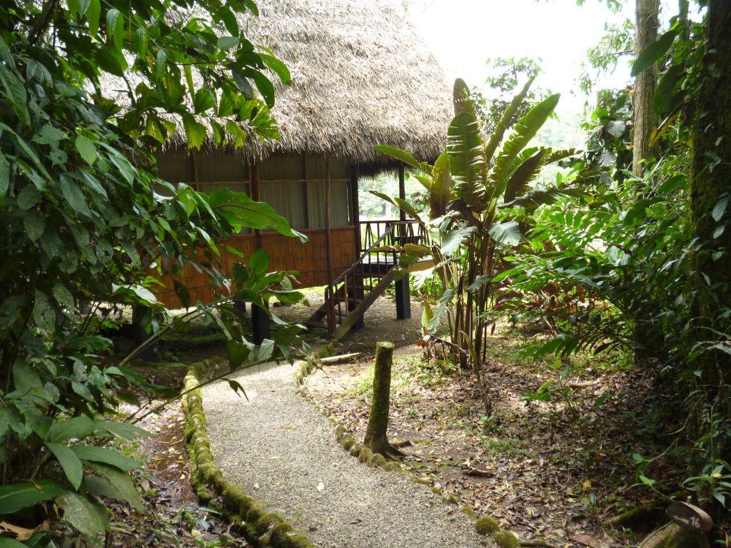 Eco lodge in Ecuador