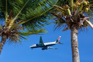 Holiday airplane and palm trees