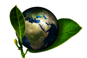 Carbon offset from green earth