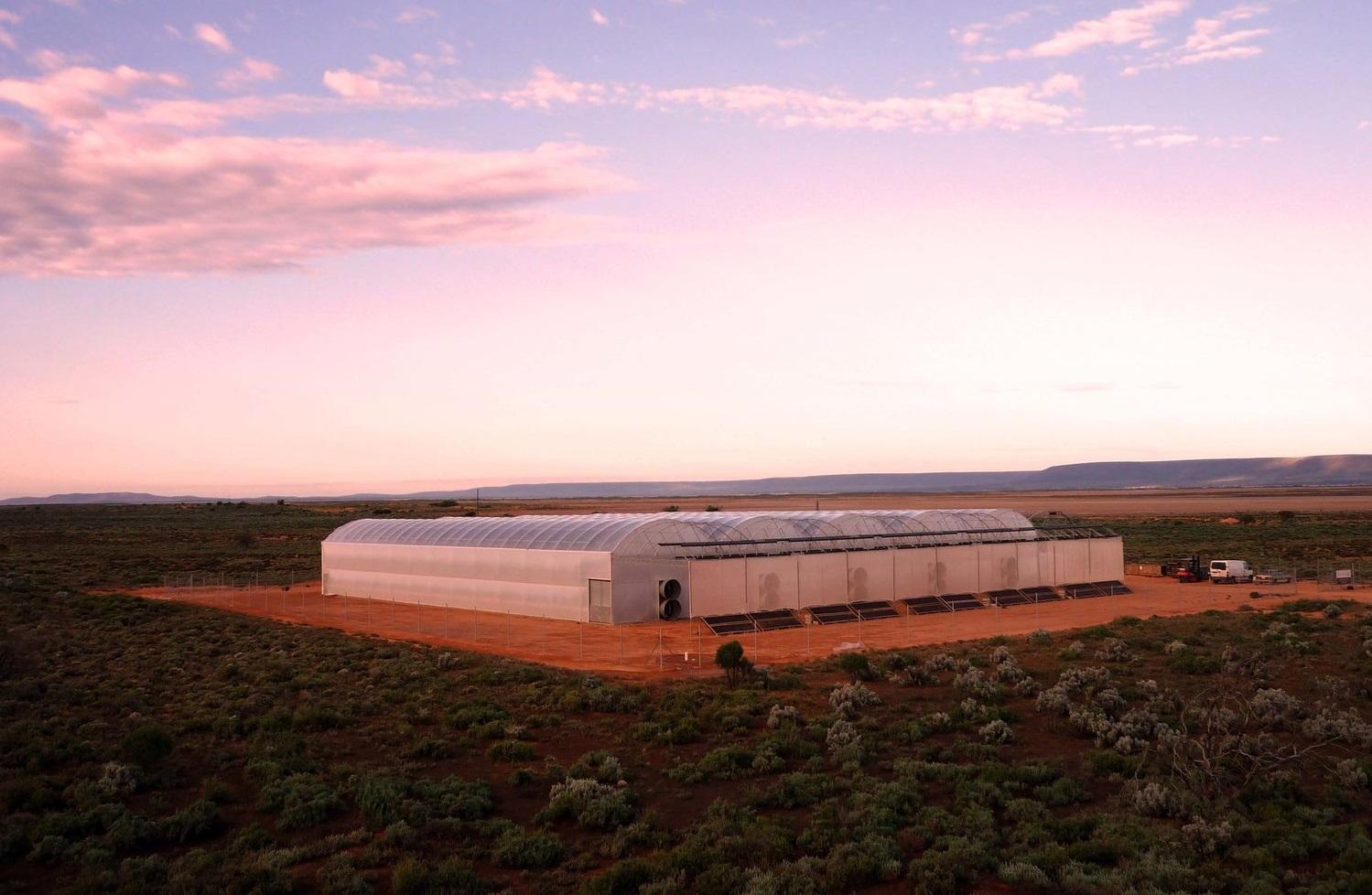 Seawater Greenhouse growing food in the desert