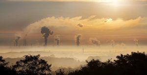 Human society and contamination