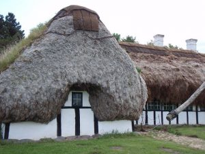 Eco roofs from seaweet