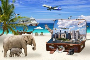 The year of Tourism and vacation
