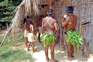 Community tourism in Amazon Rainforest