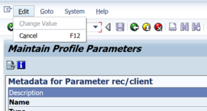 change parameter value rz11