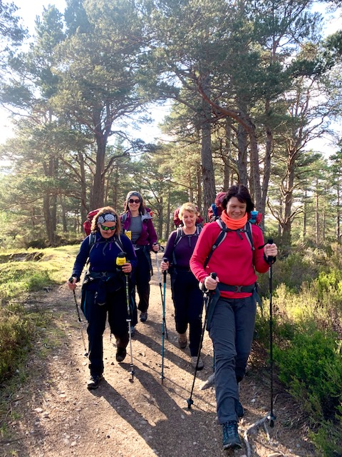 Female trekkers hike through woodland in the Cairngorms