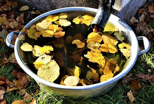 Dirty rainwater barrel