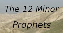 Kleine profeten