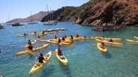 We sent 28 Scouts and 7 adults to summer camp 2021, at Camp Cherry Valley on Catalina Island