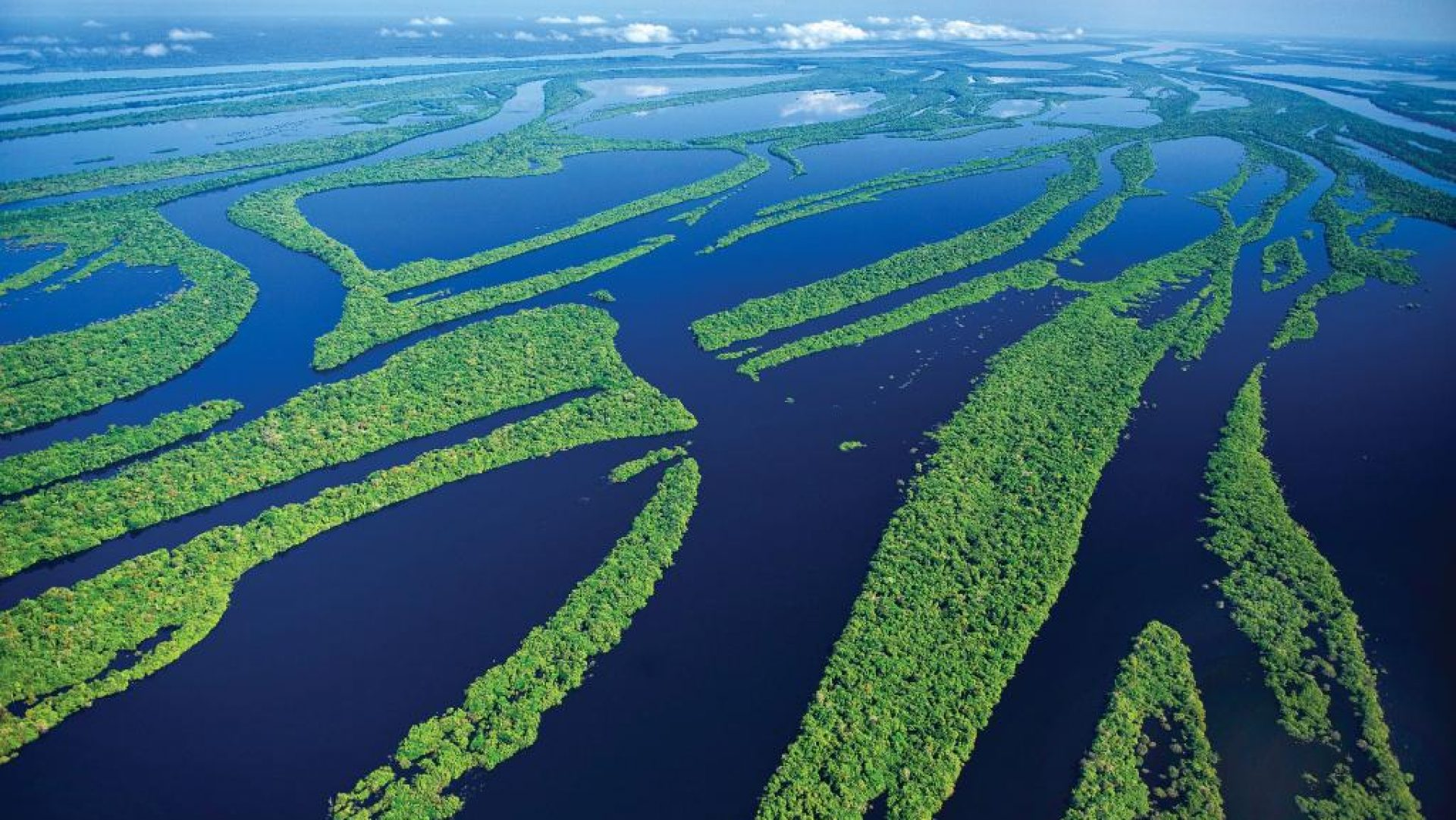 Tucan Amazon Lodge