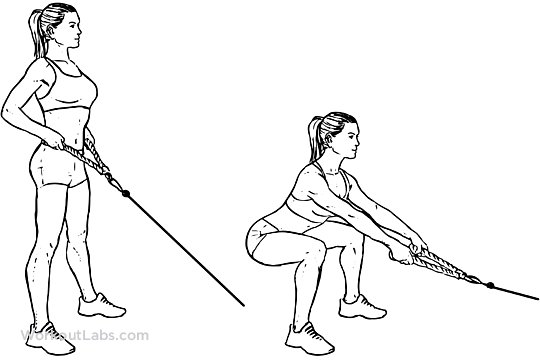 Squat_Cable_Row.png