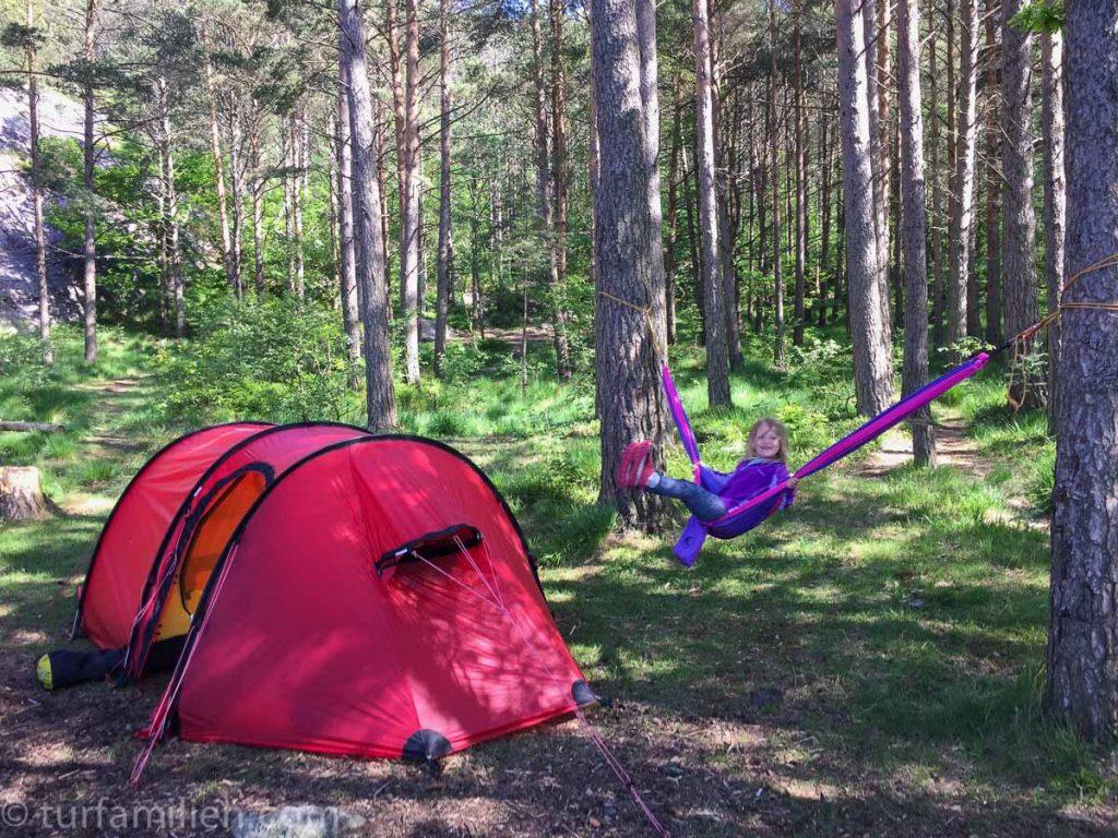 telt og hengekøye ved dalsvågen