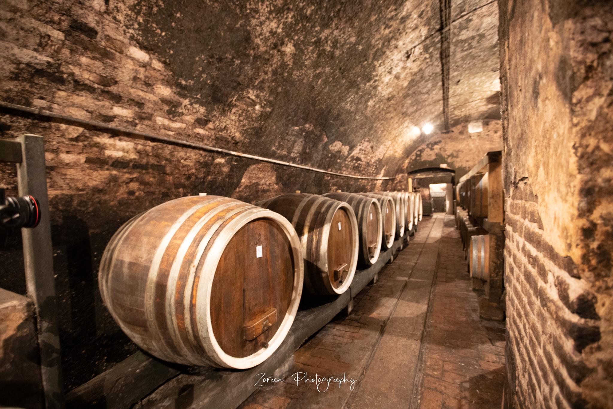 Iločki podrumi – Stari podrumi i Ladanjsko imanje Principovac
