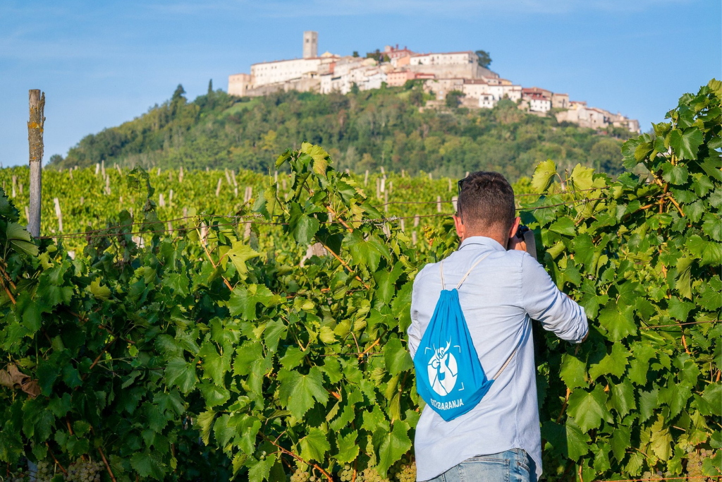 Vinski foto safari spaja ljubitelje dobrog vina i fotografije u Motovunu