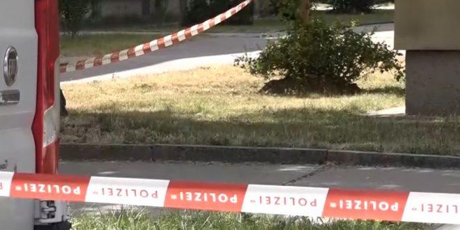 JE LI TO JOŠ NORMALNO? Krajnji desničar Kickl o ubojstvu 13-godišnje Austrijanke: Osumnjičeni dobio stan i više od 56.000 eura socijalne pomoći