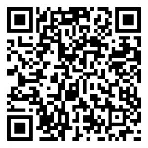 Mobile Pay QR kode på 250,-
