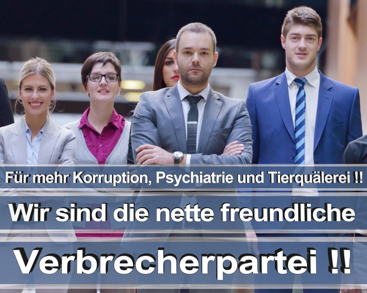 Bundestagswahl 2021 Wahlplakate CDU Wahlplakat Wahlplakate Stimmzettel Umfrage Termin Prognose (11)
