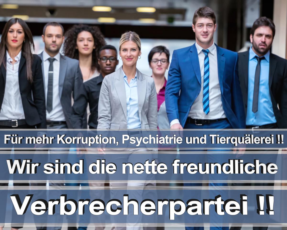 Bundestagswahl 2021 Wahlplakate CDU Wahlplakat Wahlplakate Stimmzettel Umfrage Termin Prognose (17)