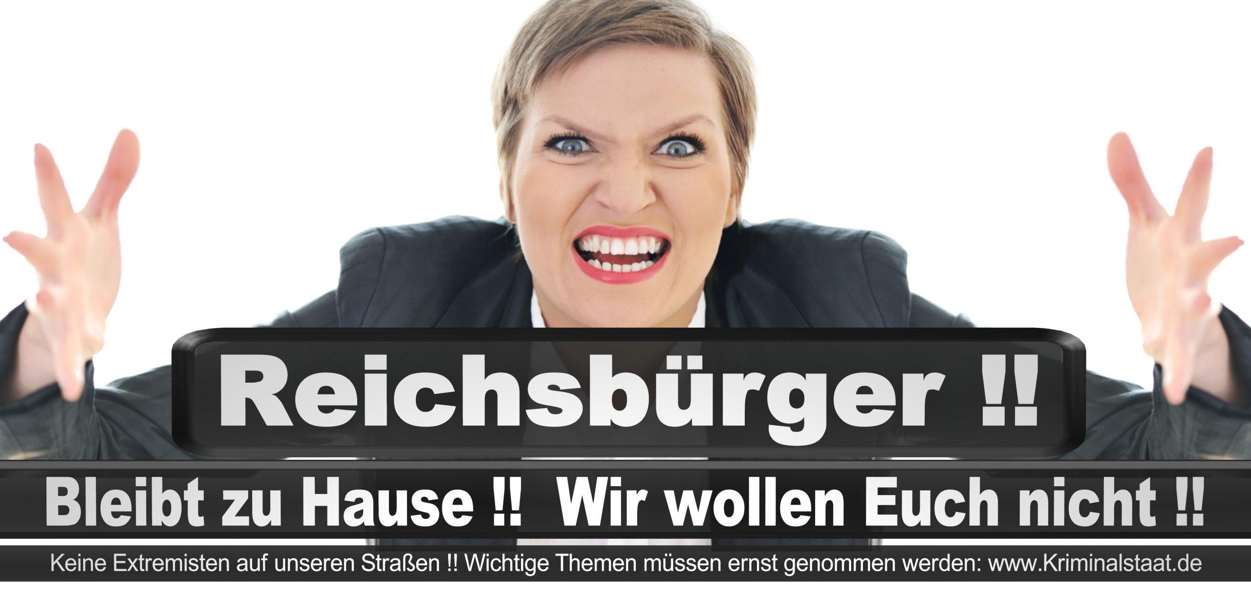 Bundestagswahl 2021 Wahlplakate CDU SPD FDP AFD Grüne Linke Stimmzettel Prognose Umfrage Kandidaten Parteien Datum (3)