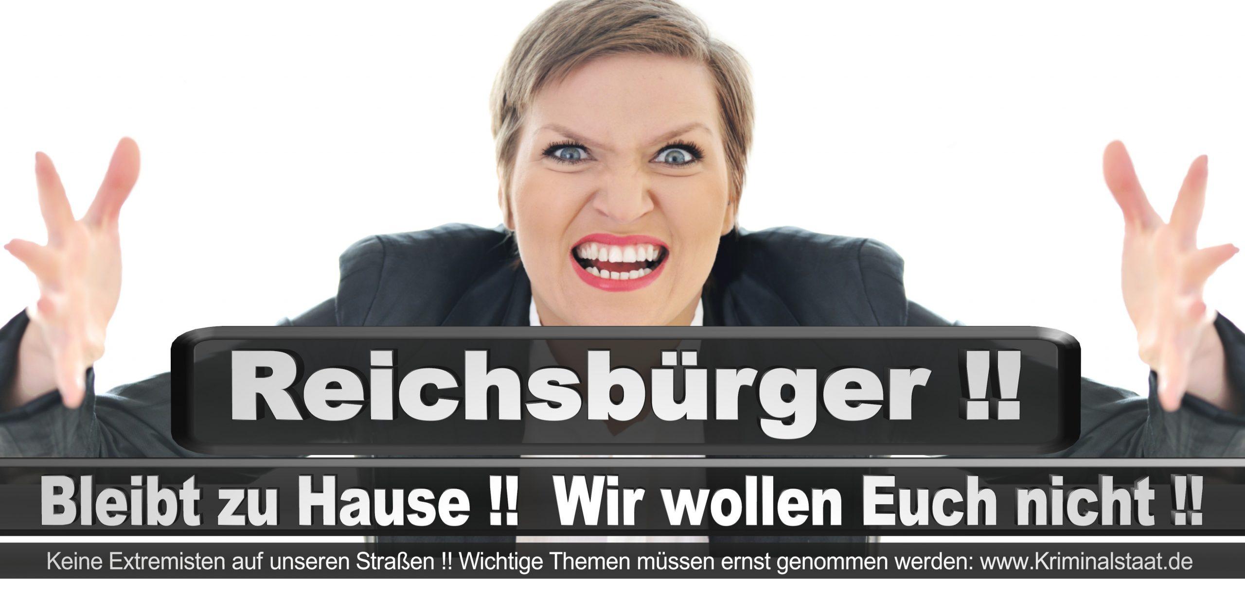 Bundestagswahl 2021 Wahlplakate CDU SPD FDP AFD Grüne Linke Stimmzettel Prognose Umfrage Kandidaten Parteien Datum (6)