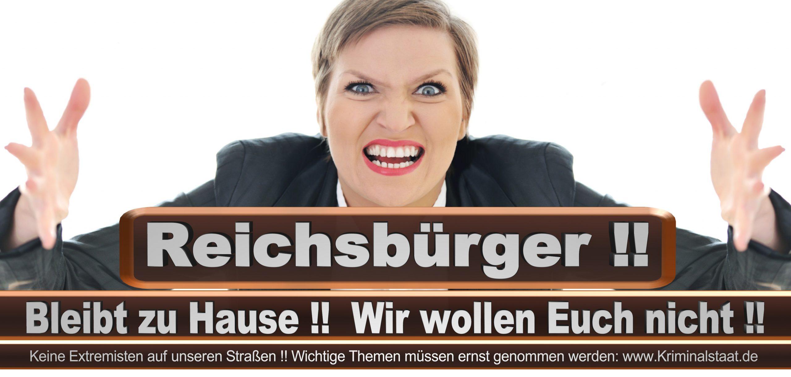 Bundestagswahl 2021 Wahlplakate CDU SPD FDP AFD Grüne Linke Stimmzettel Prognose Umfrage Kandidaten Parteien Datum (7)