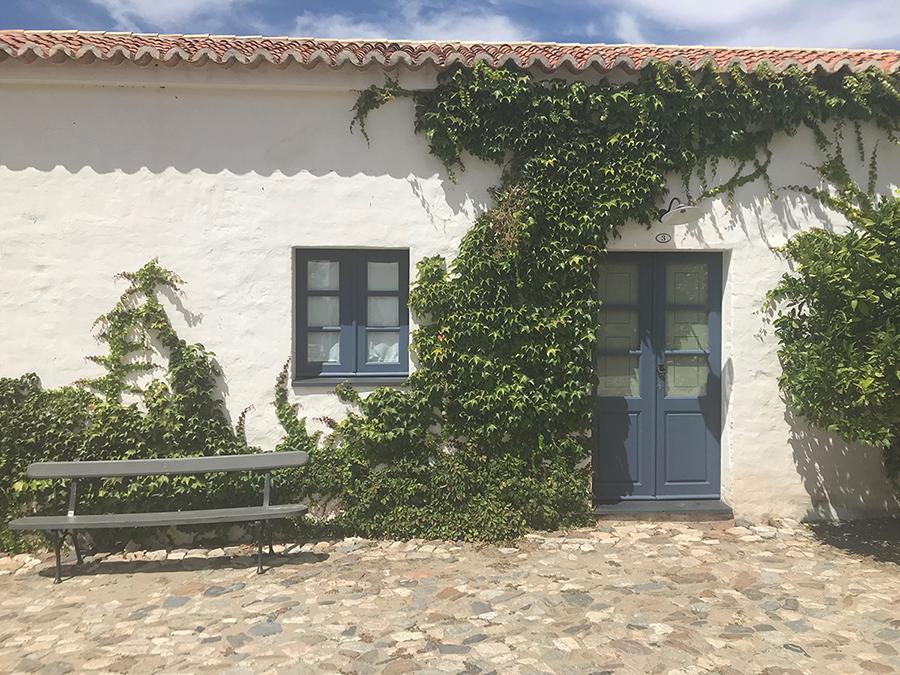 São Lourenço do Barrocal, Under the Olive Tree