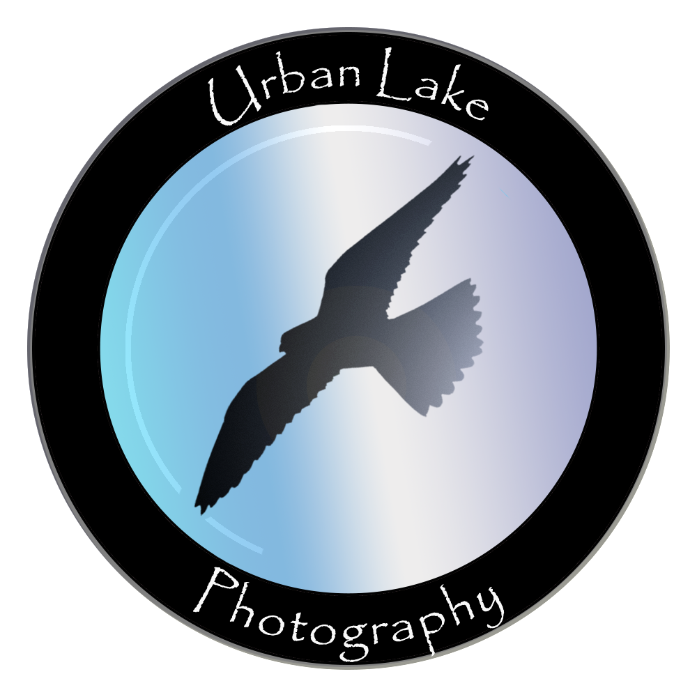 Urban Lake Photography
