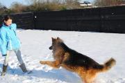 Raoul spelend in de sneeuw
