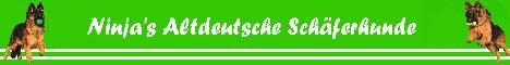 Banner link naar Ninja's Altdeutsche Schäferhunde