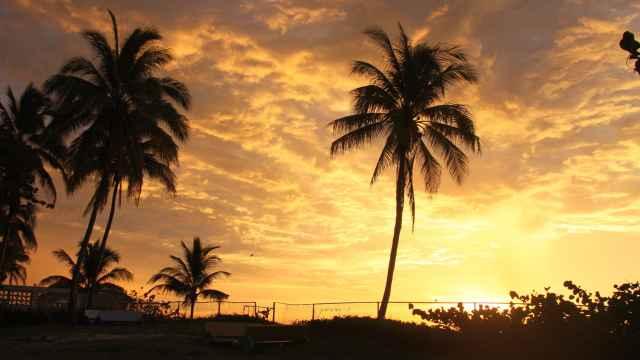 Sonnenuntergang in Varadero mit Palmen am Meer