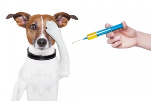 Vaccinationsinformation