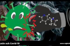 Nikotin vs Covd-19