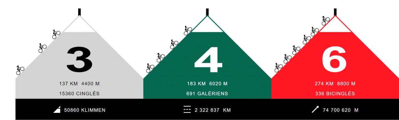 Bicinglé du Ventoux: the 3 different categories