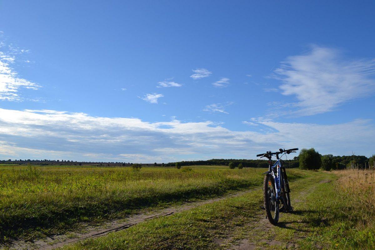 Go ride - be happy! Rock N Roll Lube er den bedste kædeolie til din cykel