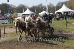 menwedstrijden Horst 203
