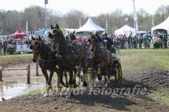 menwedstrijden Horst 396