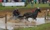 Paarden Menwedstrijd Horst 2014