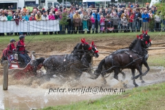 Mensport Horst 239