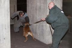 Oefening Politie Buggenum 115