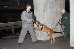 Oefening Politie Buggenum 119