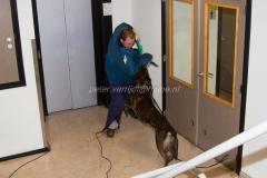 Oefening Politie Buggenum 140