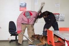 Oefening Politie Buggenum 180